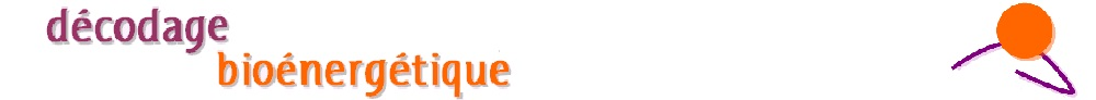 decodage-bioenergetique.com